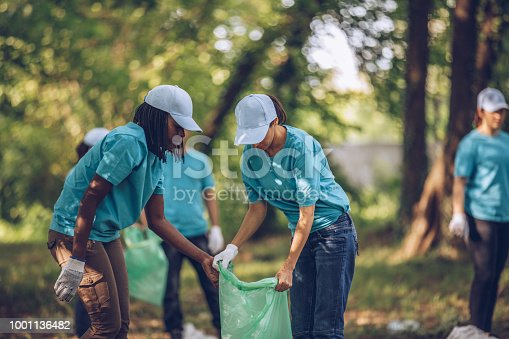 istock Group of young volunteers collecting garbage in nature 1001136482