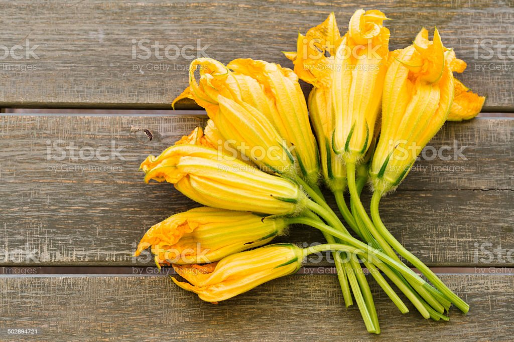 group of zuchcini flowers on wooden  background stock photo