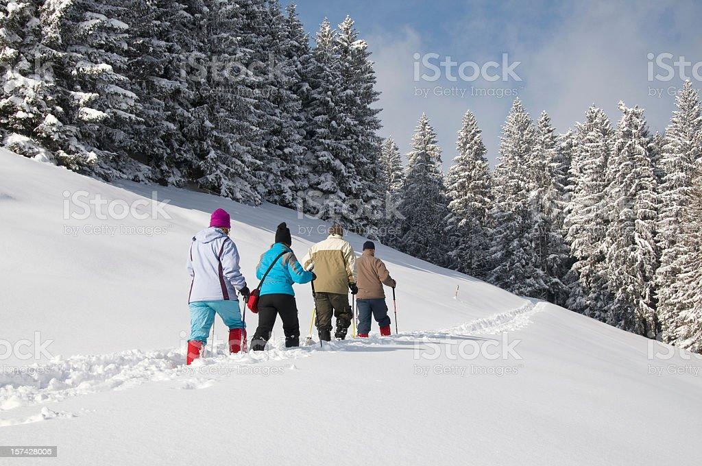 Group taking a walk on snow shoes. Salzburg, Austria royalty-free stock photo