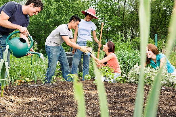 Group working in community garden Group working in community garden community garden stock pictures, royalty-free photos & images
