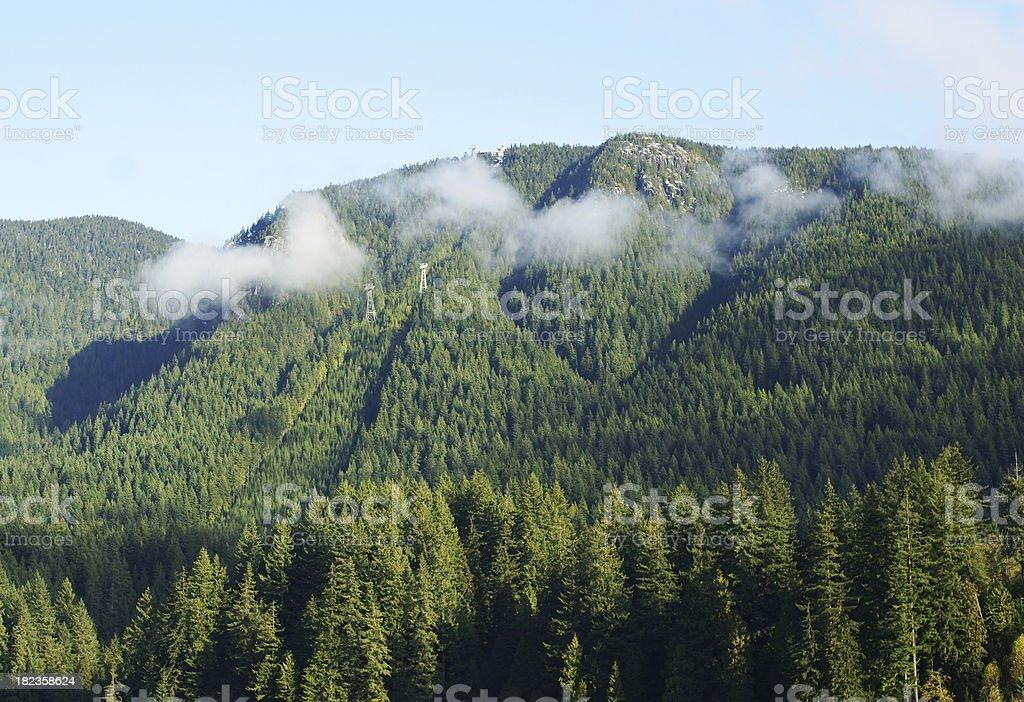 Grouse Mountain In British Columbia – Foto