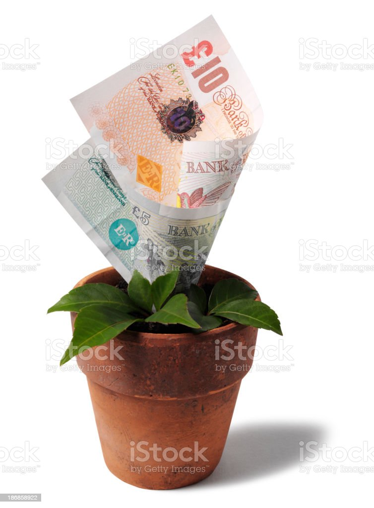 Growing British Currency in a Terracotta Plant Pot royalty-free stock photo