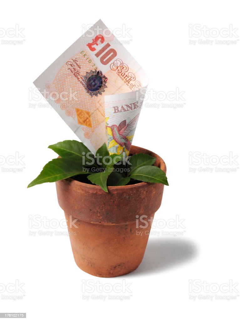 Growing British Ten Pound Note in a Plant Pot stock photo