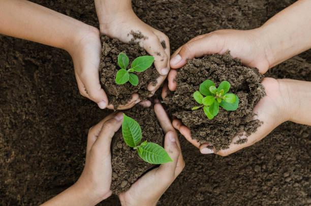 växande koncept eco gruppen hand barn plantering tillsammans - miljö bildbanksfoton och bilder