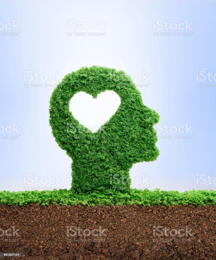 Growing emotional intelligence concept stock photo