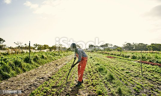 Shot of a young man working the soil with a pitchfork on a farm