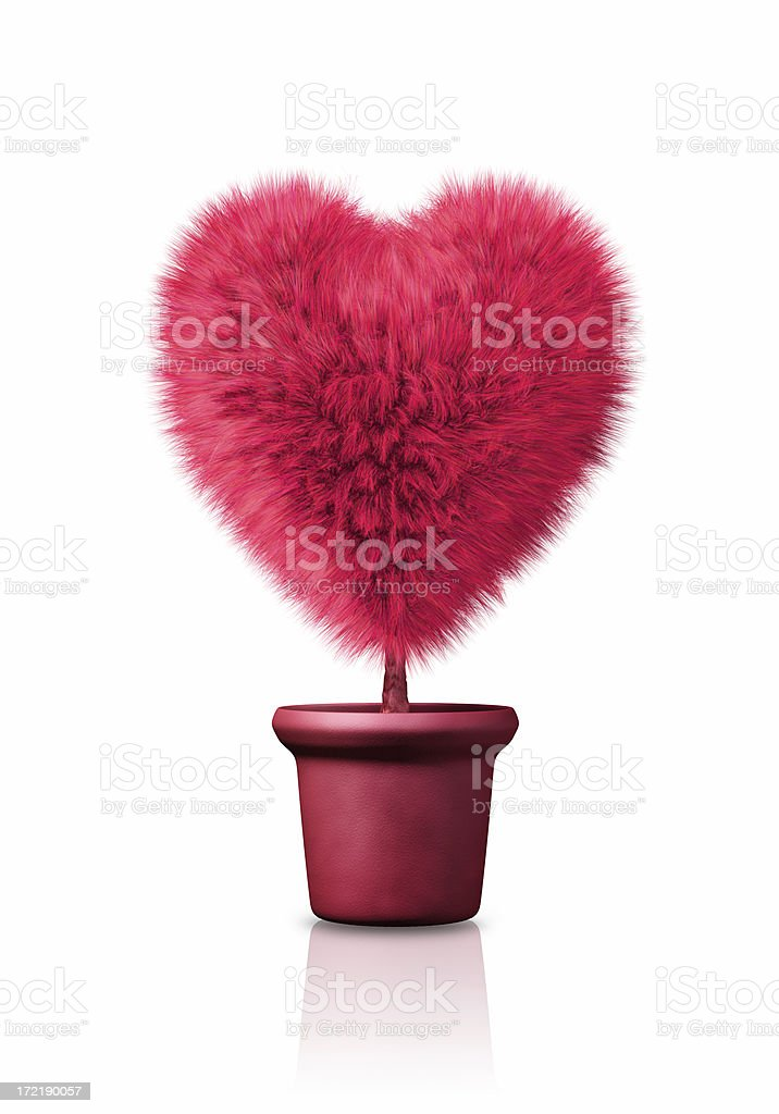 Growing Heart royalty-free stock photo