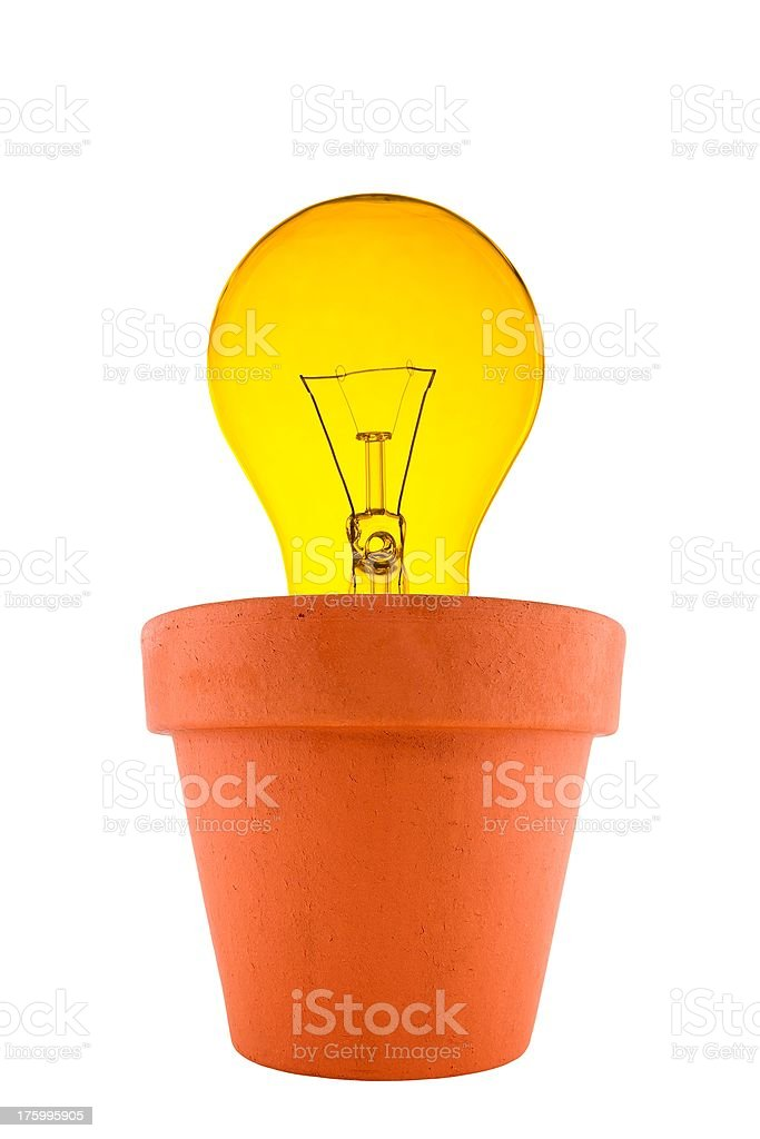 Growing ideas. royalty-free stock photo