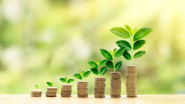 concetto di investimento in crescita - guadagnare soldi foto e immagini stock