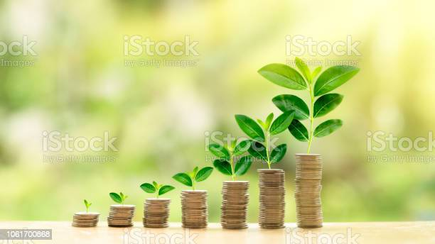 Photo of Growing investment concept