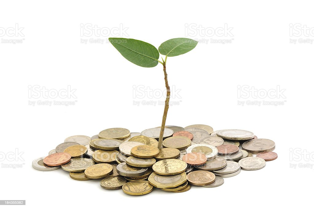 growing investment stock photo