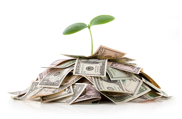 Growing investments. Heap of money with seedling. Growing investments. Heap of money with seedling.Some similar pictures from my portfolio: money tree stock pictures, royalty-free photos & images