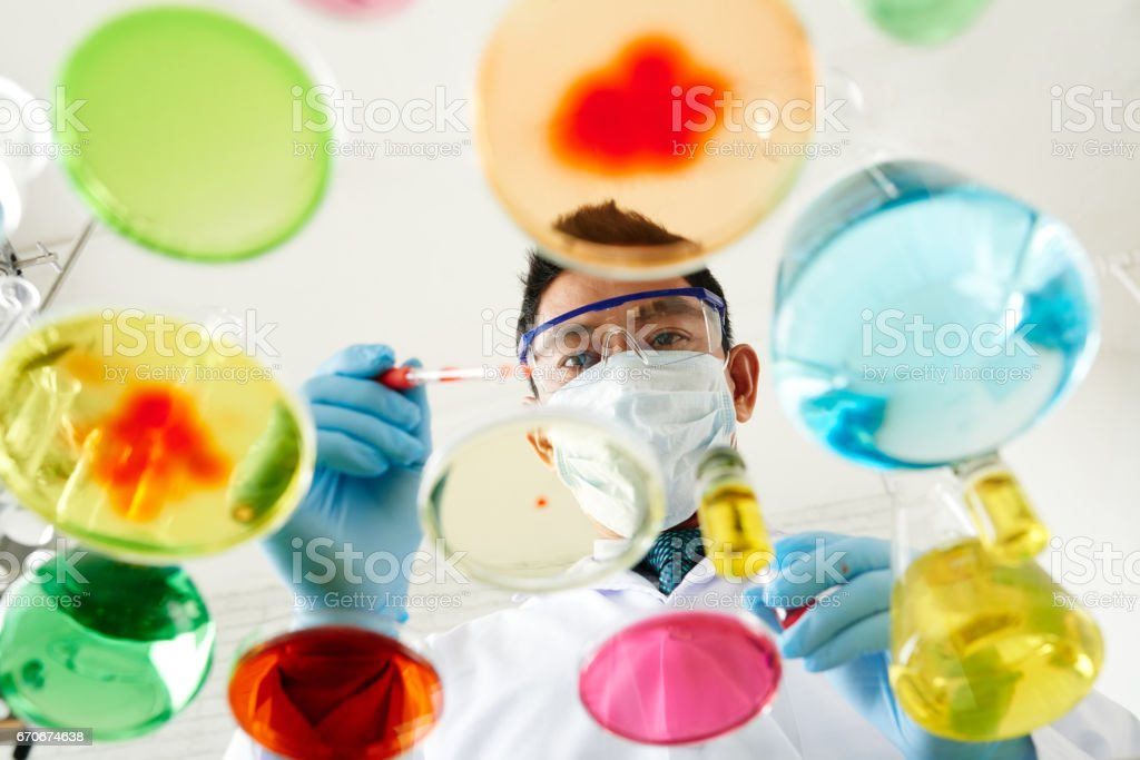 Growing microbial culture stock photo