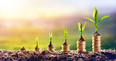 istock Growing Money - Chart In Rise - Finance Investment Concept 909033826