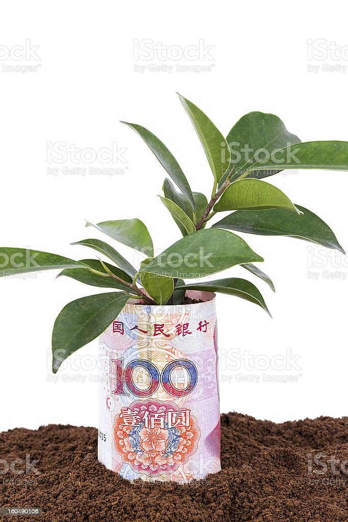 growing money in dirt royalty-free stock photo