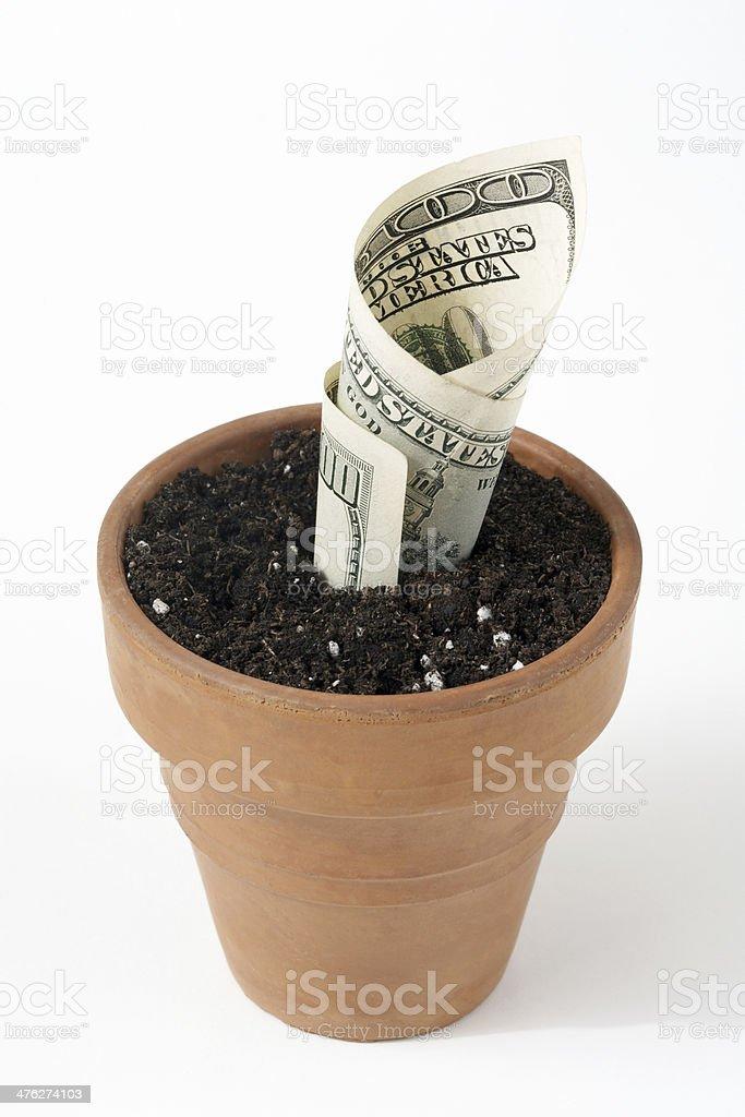 Growing Money royalty-free stock photo