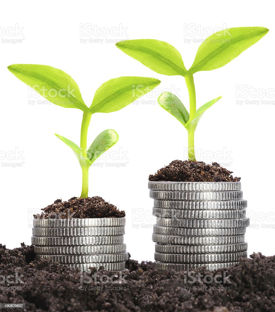 Growing money. royalty-free stock photo