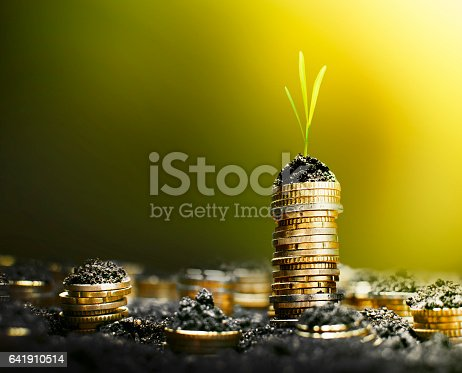 Euro coin in soil growing in stacks with warm summer light and tiny plant on top