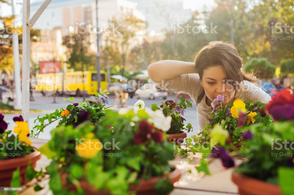Growing new business like a flower royalty-free stock photo