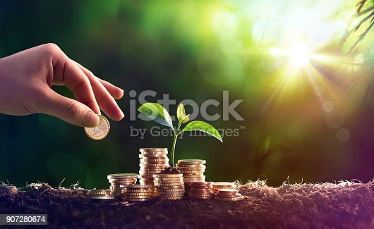 Sprout In Coins Money