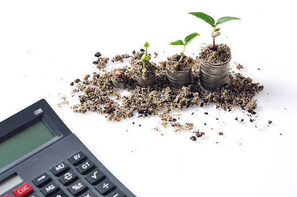 Wachsende Pflanze auf die Steigerung Münze auf weißem Hintergrund – Foto