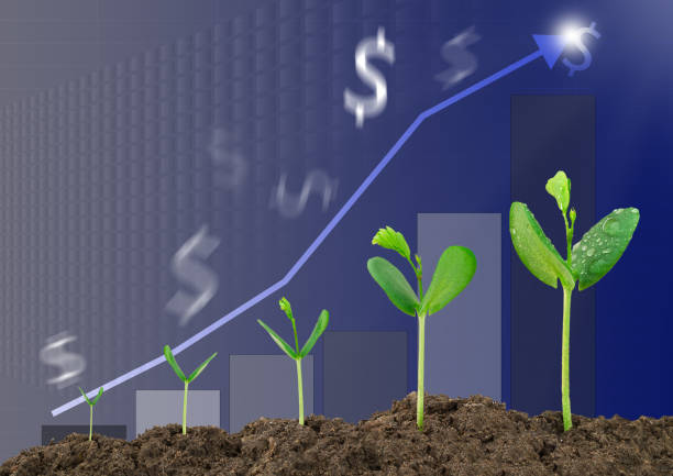 Growing sprouts, bar graph, blurred dollar sign background, business concept - foto stock