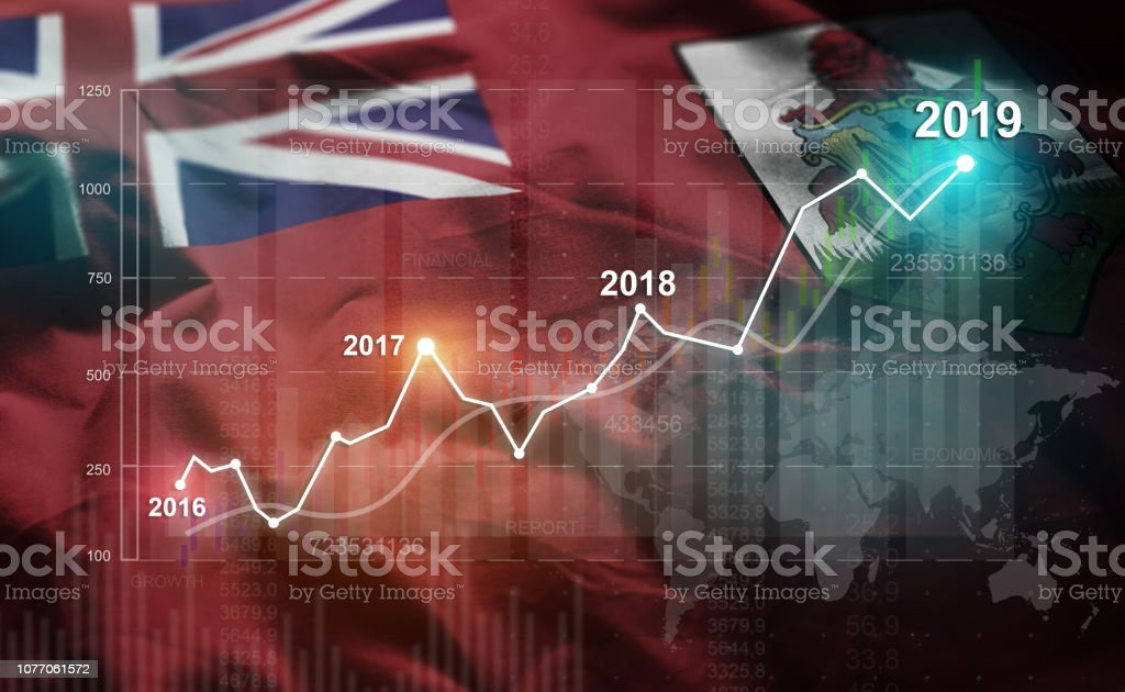 Growing Statistic Financial 2019 Against Bermuda Flag stock photo
