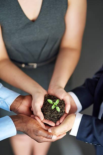 Wachsende Ihr Unternehmen von der Geburt – Foto