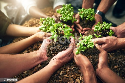 istock Growing together 1073090386