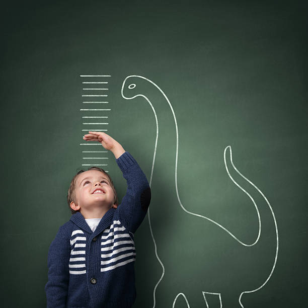 growing up taller than a dinosaur - height measurement stock photos and pictures