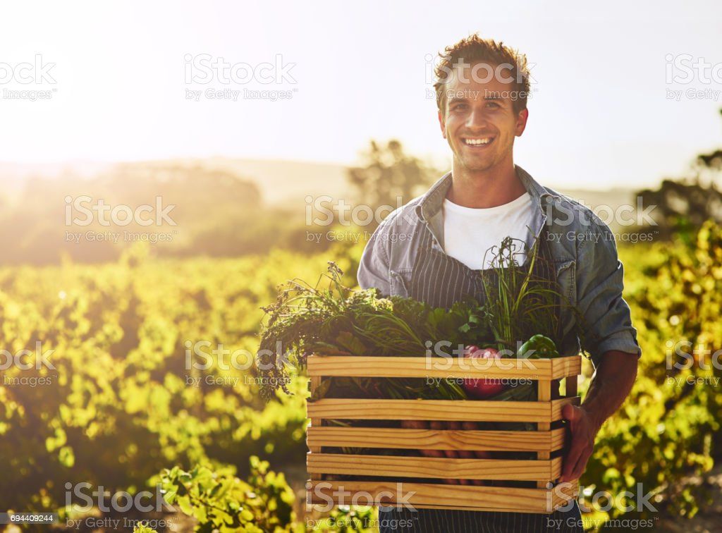 Growing your own is worth it stock photo