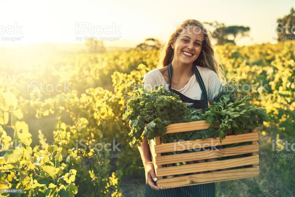 Grown better and it tastes better stock photo