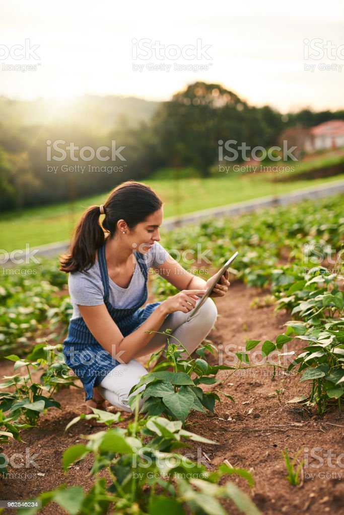 Grown with her own two hands - Royalty-free Adult Stock Photo