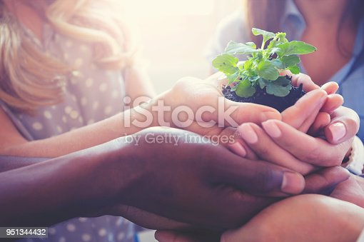 Growth concept. Group holding a seedling plant. Multi cultural and multi ethnic group holding a small plant in their hands. Asian, African, African American and Caucasian ethic backgrounds represented. Plant is very small and fragile looking. Shot shows care, teamwork and bonding.