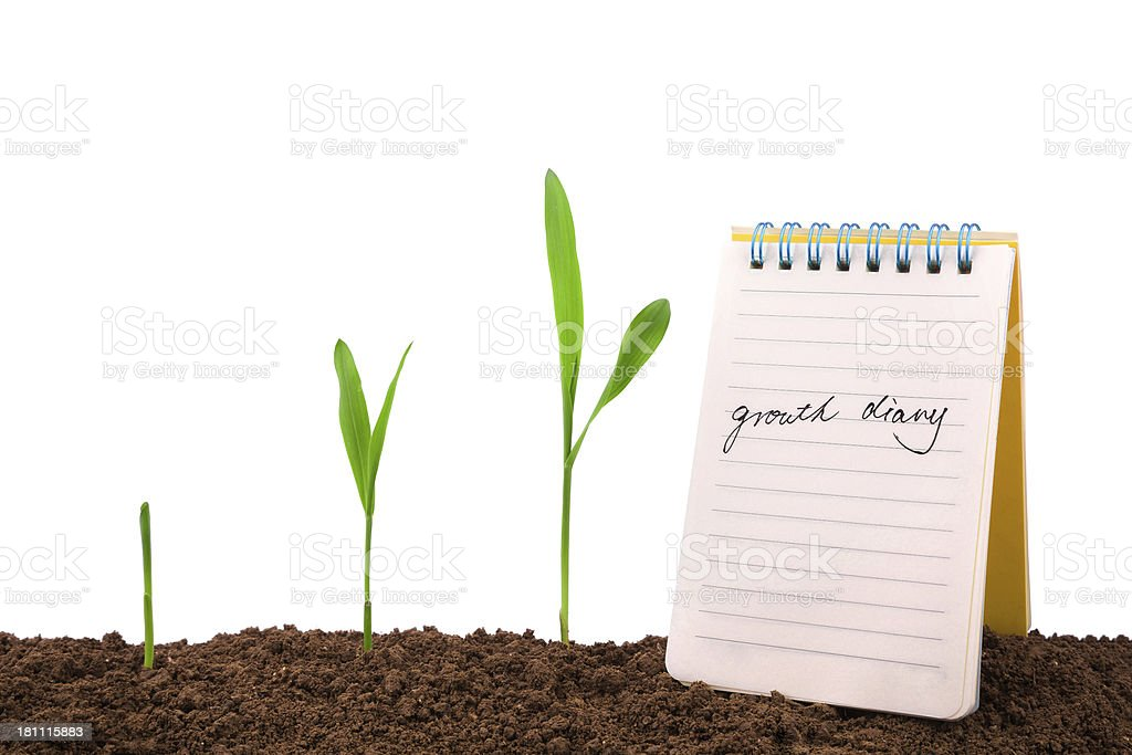 growth diary and history:plant sequence & note book royalty-free stock photo