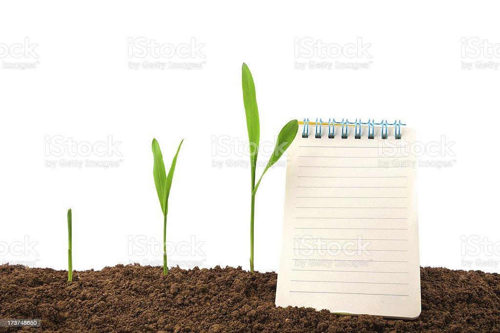 Croissance journal et de l'histoire :  plant sequence & ordinateur portable - Photo