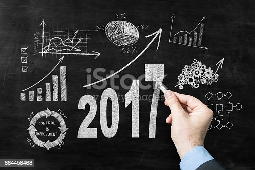 istock Growth strategy for the year 2017 864458468