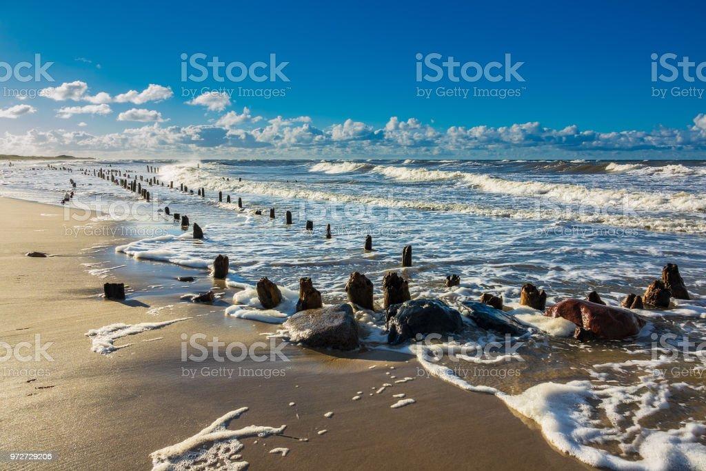 Groynes am Ufer der Ostsee  – Foto
