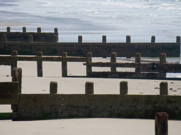 épis de bois l'érosion mer bord de mer plage protection en bois côte littoral vagues de l'océan - Photo