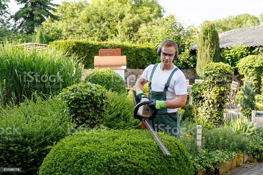 Gärtner bei Gartenarbeit stock photo