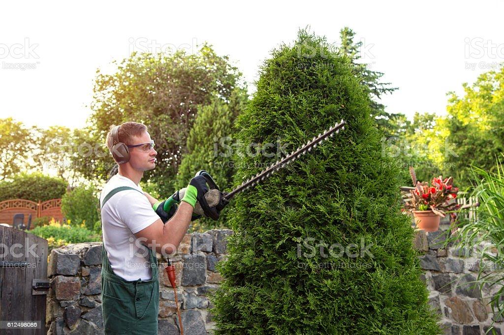 Gärtner bei Gartenarbeit – Foto