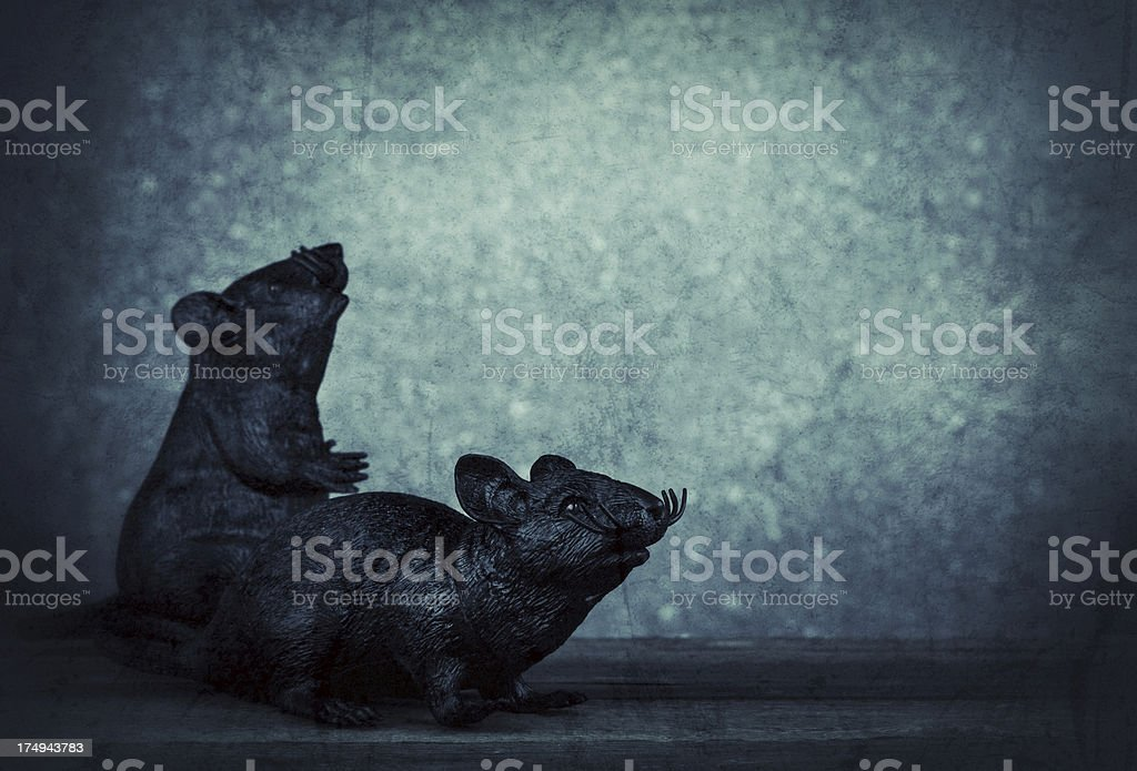 Gruesome Rat Couple royalty-free stock photo