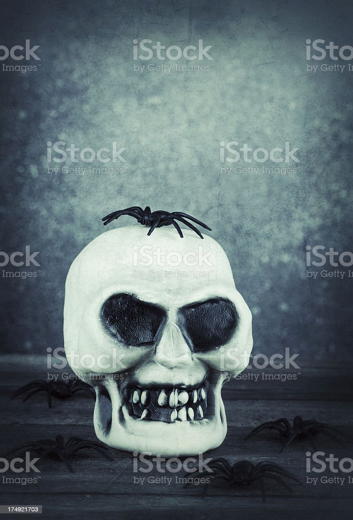 Gruesome Skull with Spiders royalty-free stock photo