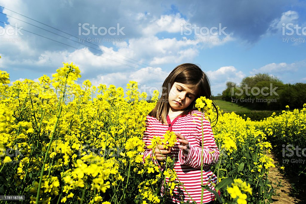 Grumpy child in field stock photo