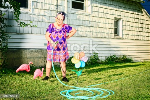 A grumpy granny in curlers and cat's eye glasses watering her lawn. More granny images.