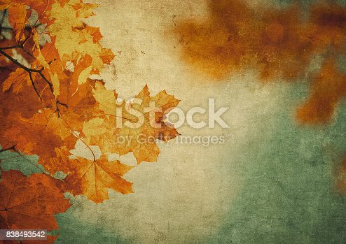 istock grunge background with autumn leaves 838493542