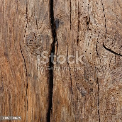 Grunge blank wood textured background