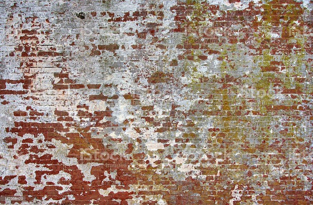 Grunge Bricks royalty-free stock photo