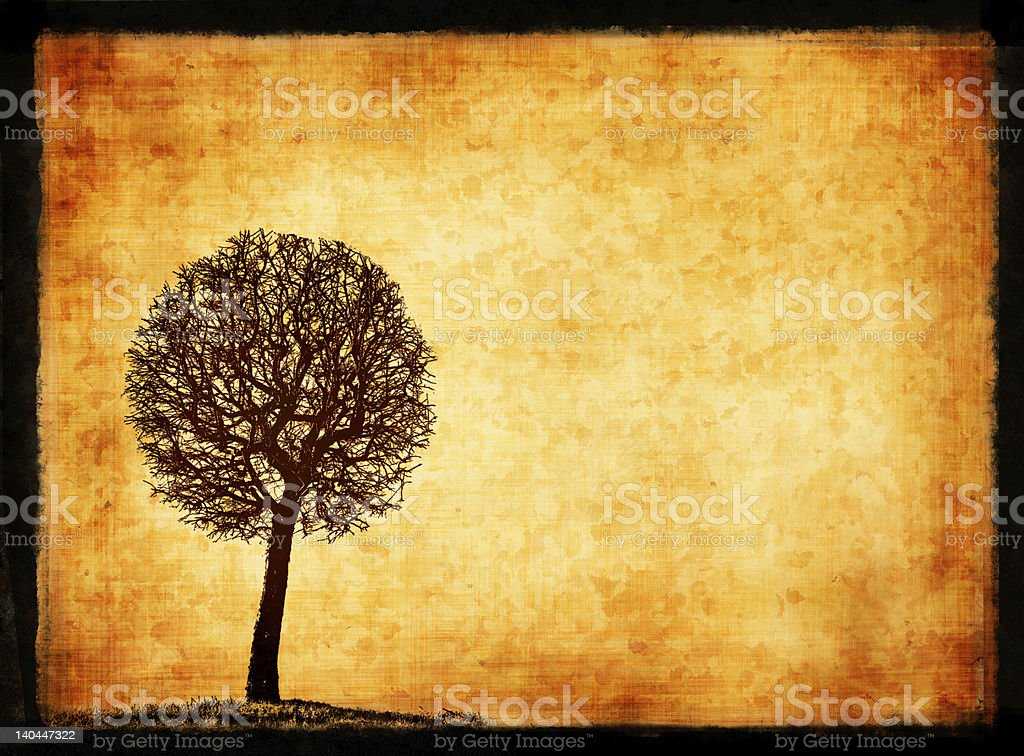 grunge frame with tree silhouette stock photo