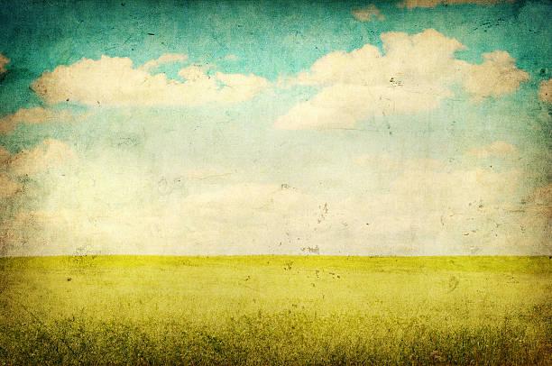 grunge bild der grünen feld und blauer himmel - himmel bilder stock-fotos und bilder